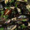 Belgian Golden Ale Steamed Mussels