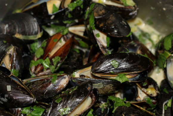 cooked mussels upclose